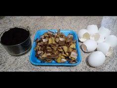SUPER ADUBO NPK ORGÂNICO LÌQUIDO. ( passo a passo como fazer) - YouTube Dog Food Recipes, Youtube, Gull, Handmade Crafts, Super, Videos, Gardening, Plants, Eggshell
