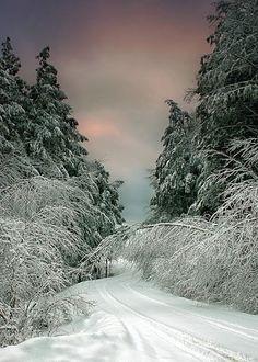 Vermont.