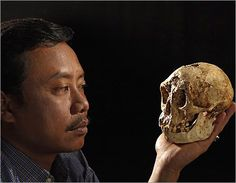 Homo Floresiensis    hominin offshoot, survived on island of Flores 94,000-13,000(?) BP    signs of island dwarfism