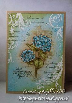 Hallo lieve bloggers, Vandaag heb ik voor jullie een kaartje gemaakt met één van mijn favoriete bloemen, de hortensia. De stempel is...