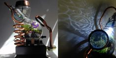 Steampunk botanical vasculum