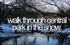 Walk through central park in the snow (and the sun) ...