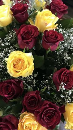 Red And Yellow Roses, Red Roses, Beautiful Rose Flowers, Amazing Flowers, Red Bouquet Wedding, Wedding Flowers, Rose Flower Pictures, Bulk Roses, Ecuadorian Roses