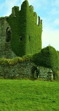 Ballycarbery Castle, Ring of Kerry, Ireland