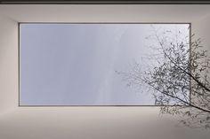 Patio+House+/+AR+Arquitetos