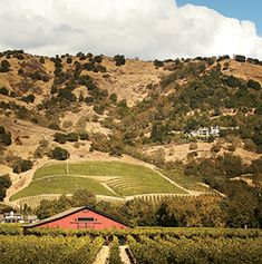 CALIFORNIA. Travel + Leisure's Insider's Guide to Napa Valley, listing where to stay, eat, taste and shop.