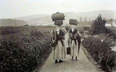 Emigracion galega