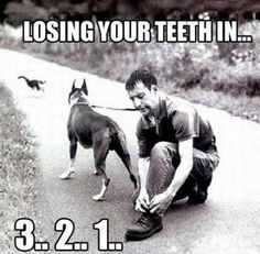Reason number one you #never put the #leash in the #teeth ...