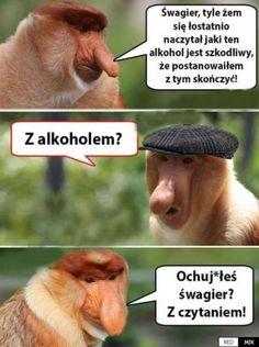 Funny Captions, Funny Memes, Polish Memes, Funny Comics, Cool, Boku No Hero Academia, Haha, I Am Awesome, Comedy