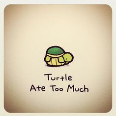 Turtle ate too much More