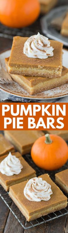 Easy pumpkin pie bars with a classic pumpkin pie filling and a 2 ingredient cake mix crust. Made in a 9x13 inch pan, these pumpkin pie bars are amazing! Pumpkin Pie Crust Recipe, Pumpkin Pie Bars, Easy Pumpkin Pie, Pie Crust Recipes, Pumpkin Dessert, Pumpkin Bread, Pumpkin Recipes, 2 Ingredient Cakes, Pet Photos