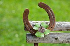 Luck~a horse shoe is very lucky with a four leaf clover Ad Of The World, Irish Cottage, Lucky Horseshoe, Horseshoe Crafts, Horseshoe Art, Four Leaves, Luck Of The Irish, Four Leaf Clover, Good Luck