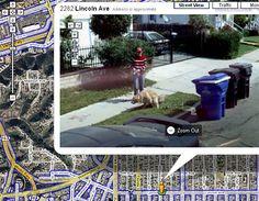 11 Best Google Maps Street view Surprises images