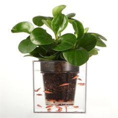Free shipping 3 pieces Self-Watering Planter Fish Tank Clear Tube Plant Pot / Flower Pot Aquarium