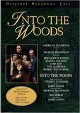 Into the Woods [DVD] [1990]