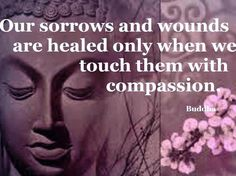 Our sorrows & wounds are healed only when we touch them with compassion. •Buddha