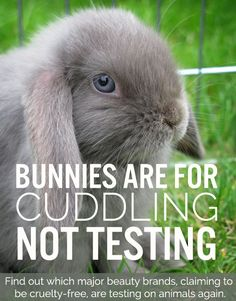 """Mandatory animal testing in China has caused many """"cruelty-free"""" brands to eschew ethics in favor of winning a piece of China's $15 billion cosmetics market. You might be surprised at what we uncovered about some pretty well-known companies.   article from Green Beauty Team"""