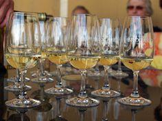 Dégustation des vins de Chablis Journée Vendanges au Domaine Jean-Marc Brocard #GourmetOdyssey