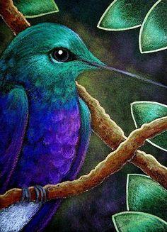 Violet Bellied Hummingbird in my Garden, Cyra R. Chalk Pastel Art, Oil Pastel Art, Oil Pastel Drawings, Bird Drawings, Chalk Pastels, Painting & Drawing, Watercolor Paintings, Hummingbird Painting, Hummingbird Wallpaper