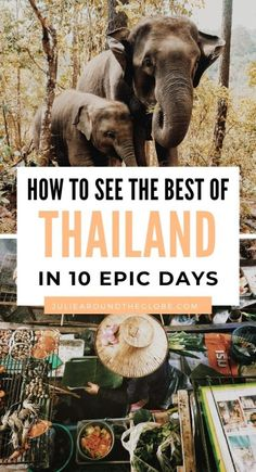 Planning a 10-day trip to Thailand? This 10-day itinerary has it all! Including beaches, nature, history, cities and culture - discover the best of Thailand | Visit Bangkok, Krabi, Koh Samui, Koh Phi, Koh Lipe... all the best places to visit in Thailand | Best things to do in Thailand | Thailands most beautiful destinations and travel inspiration for family | Thailand backpacking itinerary | 10 DAY THAILAND ITINERARY - HOW TO SPEND 10 DAYS IN THAILAND! | #Asia #SoutheastAsia