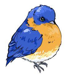 ca7ch: Birds