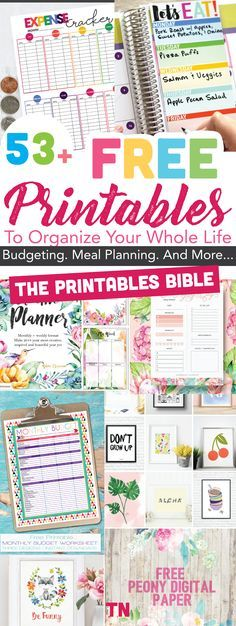 Free printables   53+ Of The Most Beautiful FREE Printables To Organize Your Whole Life: The Printables BIBLE   Beautiful free printables to organize your whole life   Budgeting printables   Meal Planners  