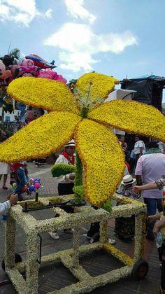 Desfile de las Flores Vélez