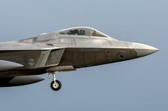 Lockheed Martin F-22A Raptor - 50 shades of grey