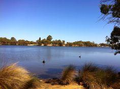 Adachi Park, Ascot, Western Australia