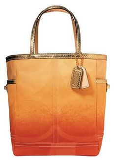 ombre tote, i would LOVE this in pink or blue! Perfect for class to carry books around. #clb2s