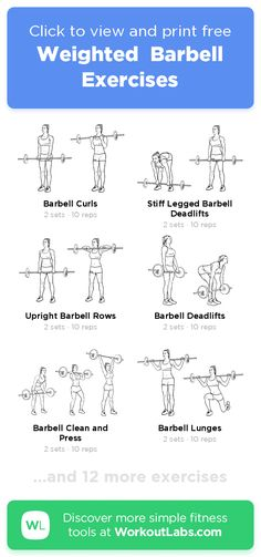 Weighted Barbell Exercises – click to view and print this illustrated exercise plan created with #WorkoutLabsFit Weight Bar Exercises, Barbell Exercises, Weight Lifting Workouts, Gym Workouts, Weight Lifting For Women, Weight Training, Barbell Workout For Women, Weights Workout For Women, Excersise With Weights