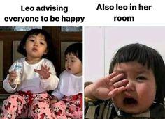 Leo Zodiac Facts, Zodiac Funny, Zodiac Signs Astrology, Leo Facts, Zodiac Memes, Zodiac Star Signs, True Horoscope, Libra And Leo, Aries