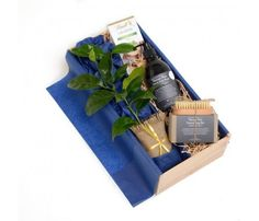 Send a unique gift with a WOW factor from NZ's Gift of the year winners Tree Gifts NZ. Stunning Tree and plant gift boxes delivered with a range of product options NZ wide. Body Care, Unique Gifts, Bath And Body, Original Gifts