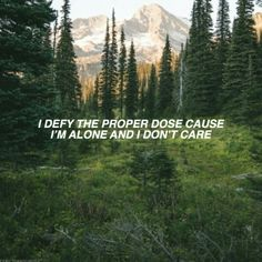 The Story So Far//Proper Dose Music Words, Music Lyrics, Band Quotes, Music Quotes, Dark Tumblr, Latest Trailers, Im Alone, Audio Songs, Drown