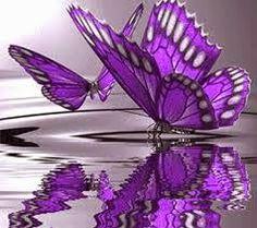 Πλησίστιος...: To become a Butterfly