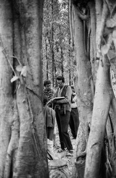 Portraits of Satyajit Ray | British Film Institute