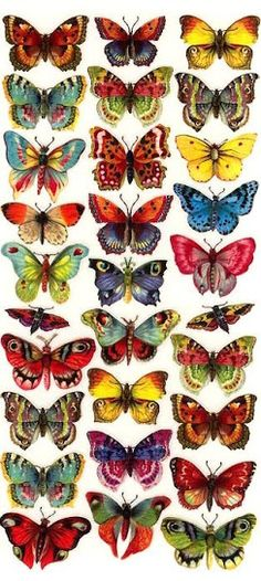 Decoupage Butterfly stickers made in the USA Art Papillon, Coloring Books, Coloring Pages, Paper Art, Paper Crafts, Diy Paper, Christmas Stickers, Butterfly Wings, Butterfly Colors