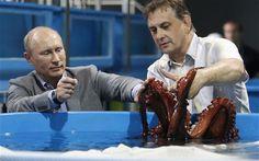 Russian President Vladimir Putin  touches an octopus in a laboratory of an oceanarium on Russky Island, near Vladivostok