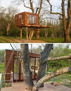 Baumraum Meditation Treehouse