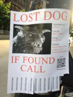 #lostdog call #ghostbusters