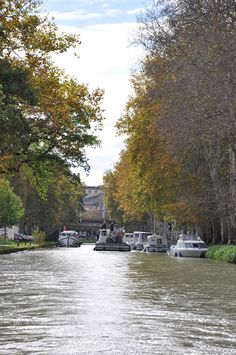 Vickie Cunningham Photography: France Day Five - Canal Du Midi