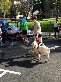 Even dogs can participate in our 5K #Autism
