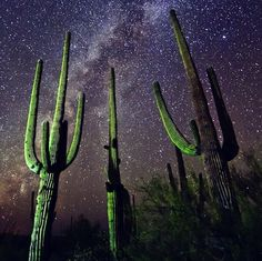 Stargazing is a highly-requested experience at The Ritz-Carlton, Dove Mountain, as guests from throughout the world visit Tucson to enjoy its celebrated astronomical institutions and world-class skies.