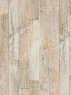 Stainmaster 10 Piece 5 74 In X 47 74 In Washed Oak Dove