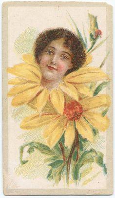 Beauties - Flower Girls ~ British American Tobacco Co. British American Tobacco, Yellow Daisies, Flower Children, Flower Girls, Victorian Women, New York Public Library, Vintage Ephemera, Print Ads, Vintage Advertisements