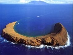 Probably the most awesome place to go scuba diving is Molokini Island, off of the coast of Maui. It is a partially sunken crater that is home to thousands of marine critters. You can also do a wall dive on the backside!