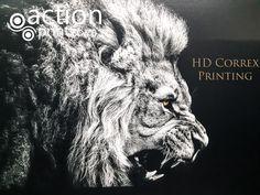 High resolution printing directly onto correx board