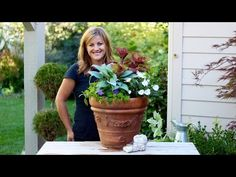 Simple Shade Planter Tips and Feeding Authentic Haven Brand premium soil conditioner teas - YouTube