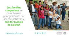 Las familias campesinas se caracterizan principalmente por ser competitivas y brindar trabajo de calidad. SAGARPA SAGARPAMX #MéxicoAgroPotencia