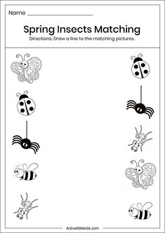 Spring Insects Matching Worksheet